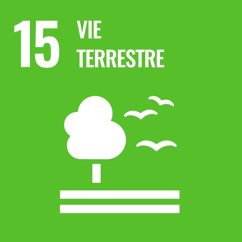 UN - Objectif 15