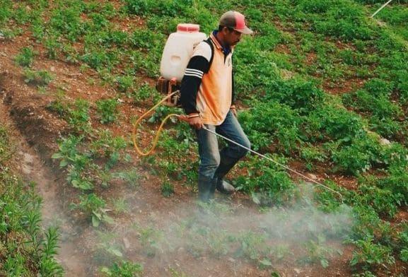 Agriculture intensive Agriculture durable Développement durable et agriculture