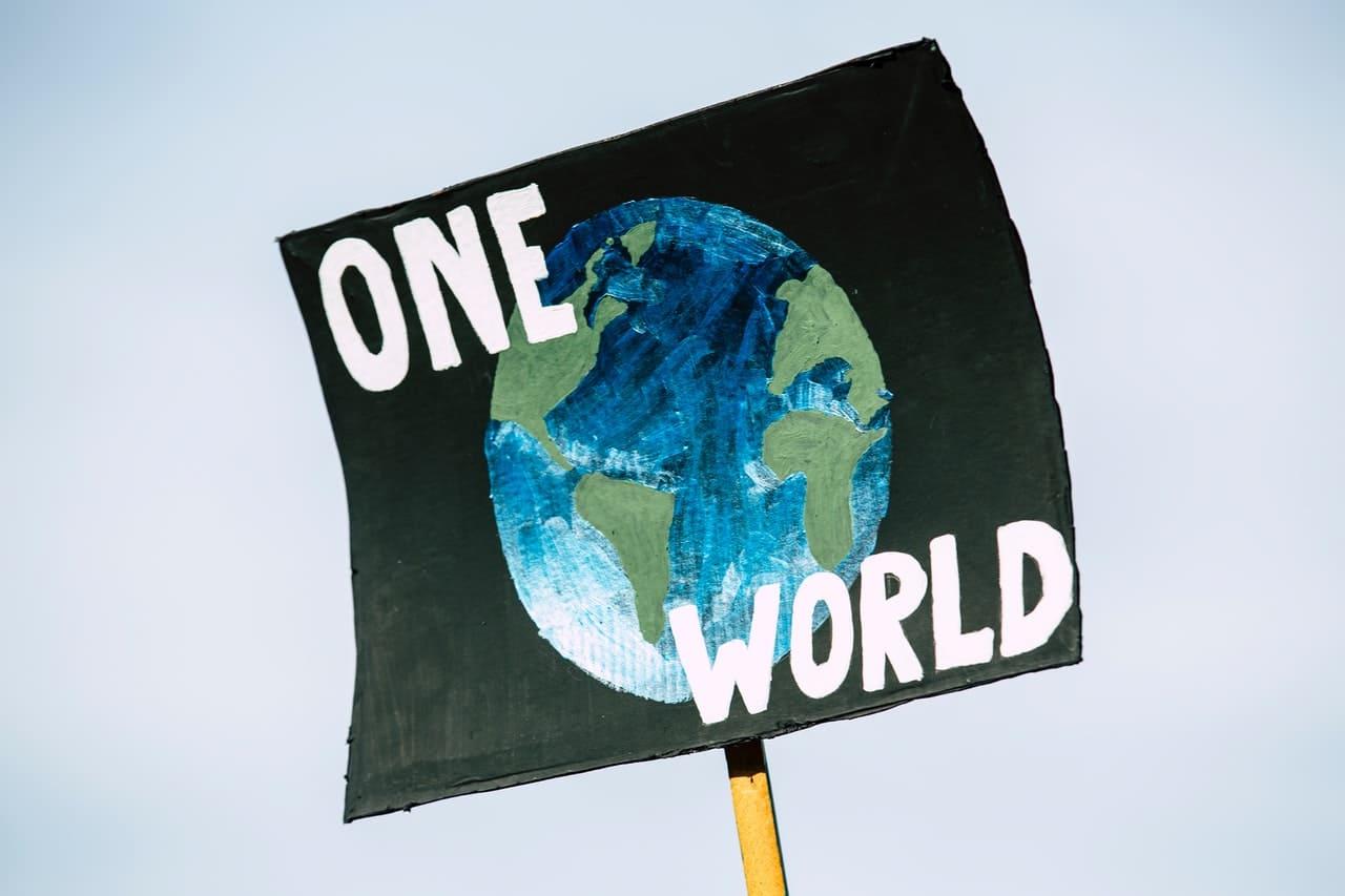 Pancarte one world contre l'écocide